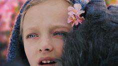 งดงามกลางไฟสงคราม!!? โนวา เด็กสาวที่เหล่าวานรยอมรับใน War for the Planet of the Apes
