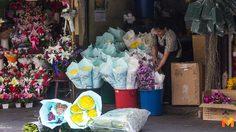 ราคาดอกกุหลาบ เริ่มปรับตัวขึ้น รับ 'วาเลนไทน์' นี้