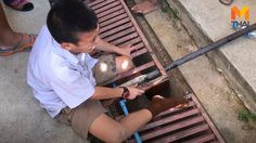 ผู้ปกครองโวย หลังเด็กตกร่องฝาท่อระบายน้ำ ครูเผย! จุดที่เกิดเหตุไม่มีงบซ่อมแซม