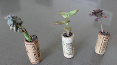 DIY กระถางต้นไม้ จากจุกไวน์ สุดแสนน่ารัก