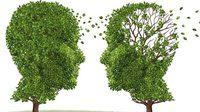 รู้จัก 'อัลไซเมอร์' โรคร้ายใต้ร่มเงาของโรคสมองเสื่อม