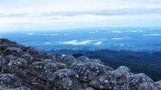 เที่ยว ภูหินร่องกล้า …  สะพายกล้อง เดินป่าหน้าฝน