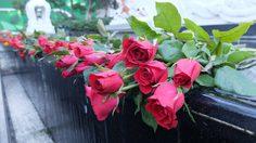 ชวนขอพรความรัก พระตรีมูรติ ทุกวันพฤหัสบดี เวลาสามทุ่ม !!