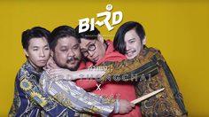 เนื้อเพลง กำแพง – BIRD THONGCHAI X POLYCAT