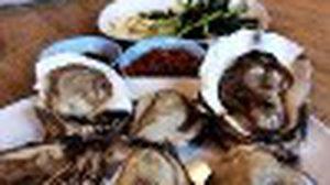 เพื่อนทะเล ร้านอาหารซีฟู้ด เมืองทองธานี การันตีความใหญ่!!
