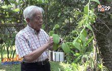 """""""ศ.ระพี สาคริก"""" บิดาแห่งกล้วยไม้ไทย ถึงแก่อนิจกรรม"""