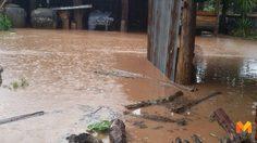 พะเยาอ่วม! ฝนตกหนักน้ำป่าไหลหลากท่วมบ้านเรือนประชาชน