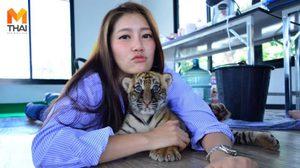 ผู้บริหารสาว 'ไทเกอร์ปาร์ค' เมืองพัทยา เผยสะเทือนใจ หลังมีคนใจร้ายฆ่า 'เสือดำ'