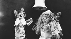 ทำไปได้! ภาพประวัติศาสตร์จับสัตว์เลี้ยงถ่ายแฟชั่น เมื่อ 100 ปีก่อน