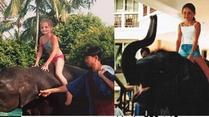 พบแล้ว นิ้งหน่อง ช้างไทย ช่วย ด.ญ.อังกฤษขณะเกิดสึนามิ 47