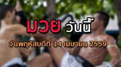 โปรแกรมมวยไทยวันนี้ วันพฤหัสบดีที่ 14 เมษายน 2559