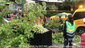 ฝนถล่มกรุง! หลายพื้นที่ตกหนัก น้ำท่วมขัง ต้นไม้ล้ม