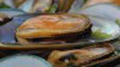 แหล่งกินหอย ในประเทศไทย เตรียมพร้อมกับวันหยุดนี้