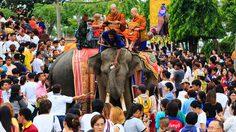เที่ยวสุรินทร์ รับบุญใหญ่ ตักบาตรบนหลังช้าง หนึ่งเดียวในโลก