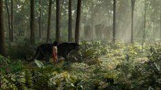 อากีรา เราจะทำดีที่สุด! เมาคลีลูกหมาป่า กวาดรายได้เข้ากระเป๋าแล้วกว่า 291 ล้านเหรียญ