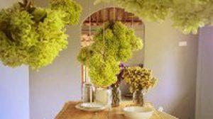 เจ๋งโครต!! แต่ง ห้องทานข้าว ด้วยโมบายผักสุดโมเดิร์น