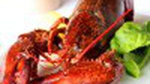 ทานได้ไม่จำกัด กับโปรโมชั่น Lobster Love Affair ลูเช่ท้าชิมกุ้งล็อบสเตอร์ตัวโต