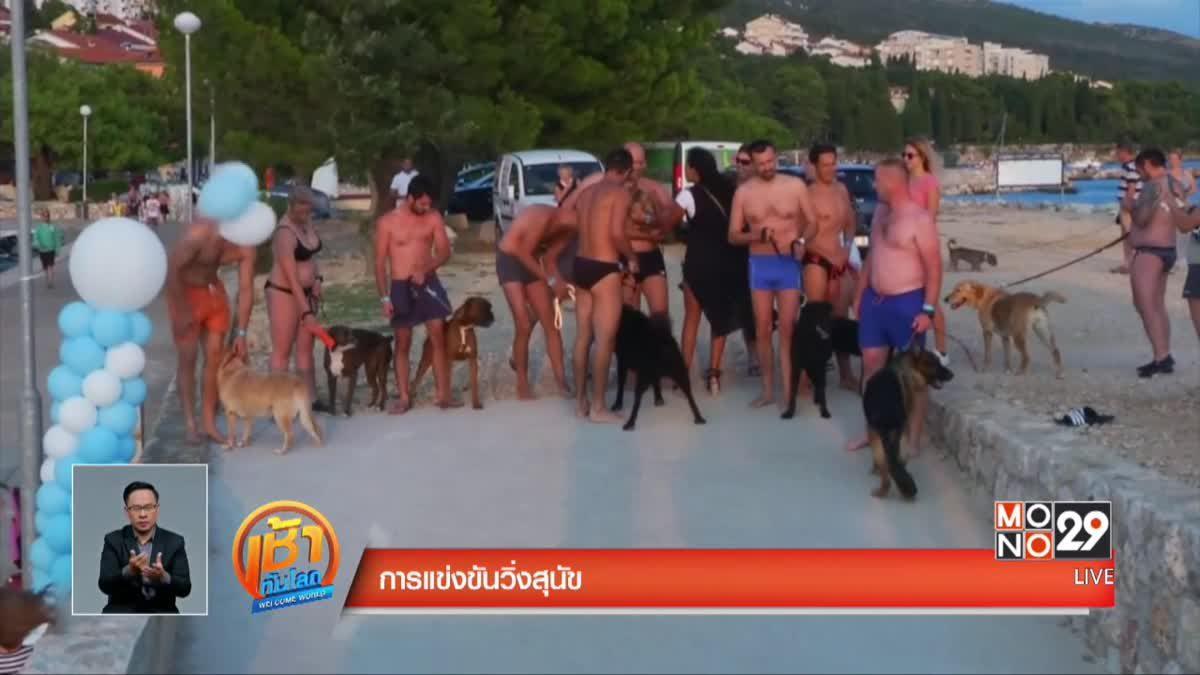การแข่งขันวิ่งสุนัข