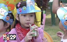 ดัชมิลล์คิดส์ จัดกิจกรรมเติมเต็มความสุขรับวันเด็กกับงาน Dutchmill Kids Playland