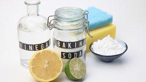 วิธีทำความสะอาดห้องน้ำ ฆ่าเชื้อโรค ด้วย น้ำส้มสายชู ดีต่อคน ดีต่อสุขภัณฑ์
