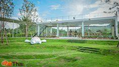 พาเที่ยว Coro Field ฟาร์มสไตล์ญี่ปุ่นแห่งสวนผึ้ง จ.ราชบุรี