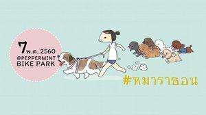 """""""หมาราธอน"""" งานที่คนรักหมาและเหล่าเพื่อนสี่ขา มาวิ่งสมทบทุนโครงการ 1 ล้าน 5 แสนก้าว"""