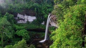 กรมอุทยานฯ ขึ้นค่าเข้าอุทยานใหม่ 31 แห่ง เริ่ม 1 ก.พ. 2558