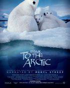 To The Arctic 3D อาร์คติก มหัศจรรย์หมีขั้วโลก