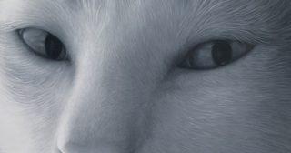 5 ภาพแมวสุดเหมือน จากศิลปินตาบอดสีฝีมือสุดเจ๋ง !