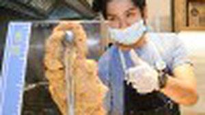 บุกครัว Hot star large fried chicken ล้วงลับ 4 วัตถุดิบพิเศษเนรมิตรไก่ทอดเทรนด์ใหม่สไตล์ไต้หวัน