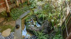 ต้องอินแค่ไหน!! จัด สวนญี่ปุ่น ยังไงให้ เก๋ เท่ ถึงแก่นเซ็น