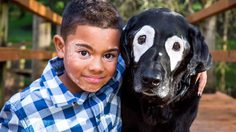 แล้วโลกก็เปลี่ยนไป!! หนูน้อยเคยเกลียดหน้าตัวเอง จนได้เจอหมาที่ป่วยเป็น โรคด่างขาว เหมือนกัน