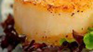หอยเชลล์จานเด่น ณ ห้องอาหาร คาเฟ่ไนน์