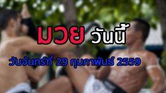 โปรแกรมมวยไทยวันนนี้ วันจันทร์ที่ 29 กุมภาพันธ์ 2559