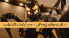 เยลโลว์แจ็กเก็ตยังไม่ตาย? ผู้กำกับ เผย ตัวร้ายจาก Ant-Man ภาคแรกอาจอยู่ในมิติควอนตัม!!