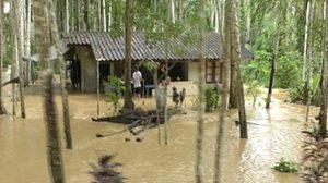 ต.ควนธานี จ.ตรัง ยังท่วมหนัก 6 หมู่บ้าน 1,000 กว่าคน