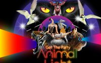 Get The Party: Animalight