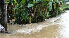 กรมชลฯ เร่งระบายน้ำเพชรบุรี คาด 2-3 วัน กลับสู่สภาวะปกติ