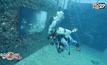นิทรรศการศิลปะใต้น้ำในสหรัฐฯ