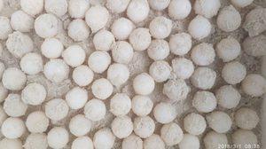 พบ 'ไข่เต่า' 108 ฟอง หน้าหาดเล็กเกาะเมียง เร่งนำไปฟักที่ปลอดภัย