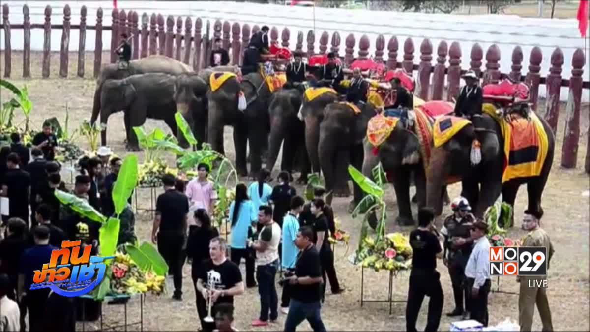 กิจกรรมวันช้างไทย