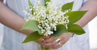 """Lily of the Valley  ดอกไม้แห่งวัน May Day"""