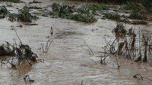 น้ำท่วมกำแพงเพชรกระทบ 3,000ครัวเรือน พื้นที่เกษตร 8หมื่นไร่