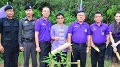 กรมอุทยานแห่งชาติฯ จัดกิจกรรมปลูกป่า ที่จังหวัดน่าน