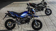 Kawasaki ประกาศวางจำหน่ายสีใหม่!!  KSR Final Edition