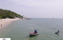 ทช.เริ่มวางทุ่นหาดทรายน้อยป้องกันฉลาม