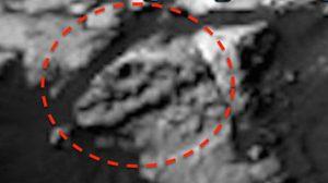 พิศวง ! แกะรอยกะโหลกไดโนเสาร์ บนดาวอังคาร