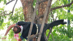 ได้รับการช่วยเหลือแล้ว ลุงพุฒปีนต้นไม้ผูกคอตาย หลังเครียดที่ดินถูกยึด
