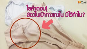 5 ข้อเท็จจริงของ กางเกงใน ที่คุณสาวๆ ยังไม่รู้…แน่ๆ