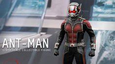 สินค้าใหม่!! ANT-MAN 1/6TH Scale Collectible Figure จากทาง Hottoys